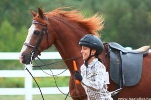 Milyen jutalmat kapjon a ló?