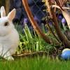 A nyúlon túl is van húsvét!