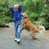 Kellemetlen a párzást utánzó viselkedés a kutyánál