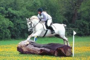 A ló lábsérüléseinek megelőzése