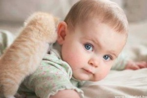 Betegségek macskáról emberre