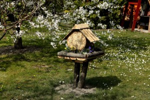 A lakosság is sokat tehet a méhek védelméért!