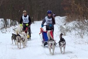 Kutyás sportokkal is találkozhatunk a hétvégi téli sportágválasztón