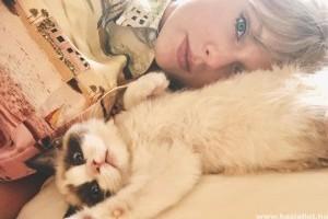 Taylor Swift a skót lógófülű macskáitól merített ihletet