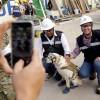 Jó pihenést Frida! A hős mexikói mentőkutya nyugdíjba vonul