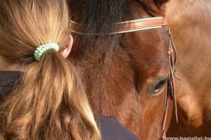 Légyszi, hívj végre állatorvost a lovadhoz...