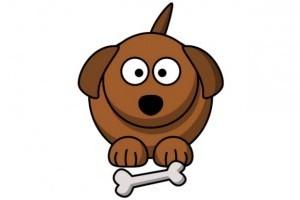 A kövér kutya baja gyógyítható - kutyafogyókúrával!